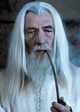 Ian McKellen was a most excellent Gandalf, in Peter Jackson's Most Excellent Lord of the Rings Trilogy.